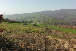 country house in Molise