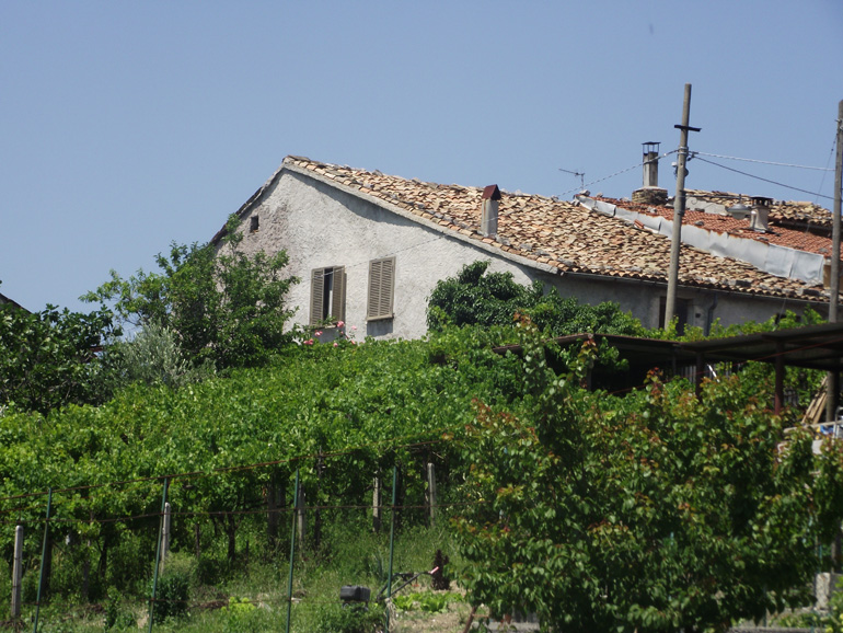 Town house for sale with large garden and wineyard in Italy Molise, Roccasicura (Vigna)