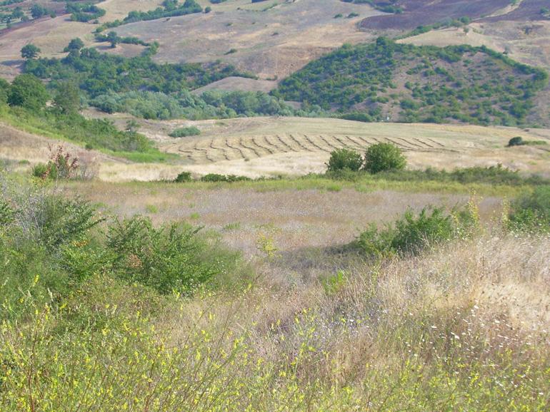 Land for sale in Molise – Terreno Callocchie, Guardialfiera