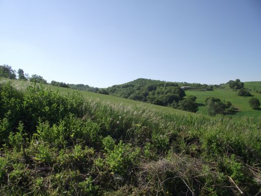 Building plot for sale in Molise