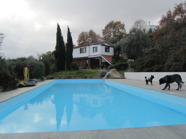 Villa with pool and sauna- Parco
