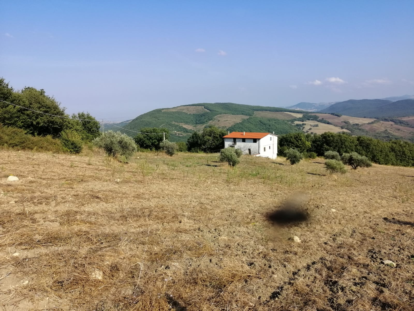 Country house in Molise to buy